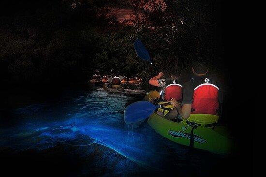 Biobay Kayak Activity in Vieques Island
