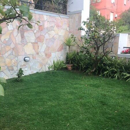 Cagliari la primavera colora il mio giardino