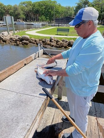 Capt. Brian carving up some nice Redfish fillets to take home with us!