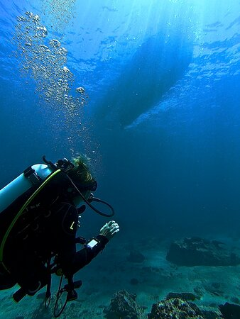 Sydney, Australia: Boat diving