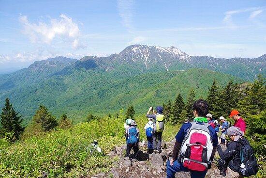 Expérience de randonnée d'une journée complète au nord de Nagano