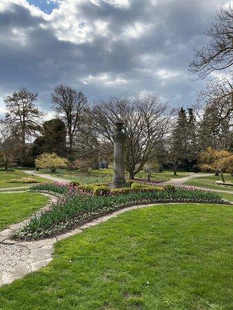 Mysig trädgård