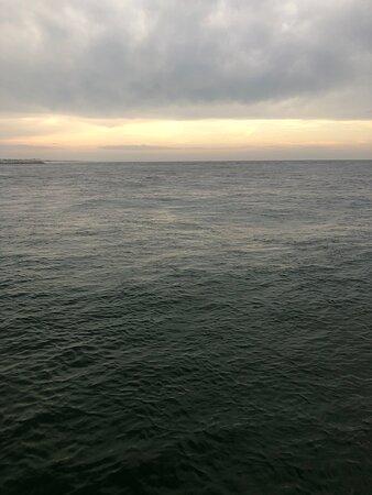 Sunset & Dolphin Catamaran Cruise in Panama City Beach Photo