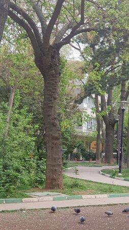 Gençlik Parkı