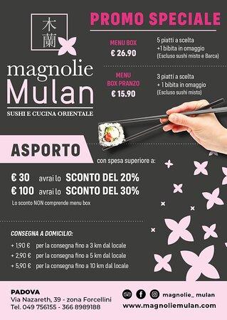 Magnolie Mulan