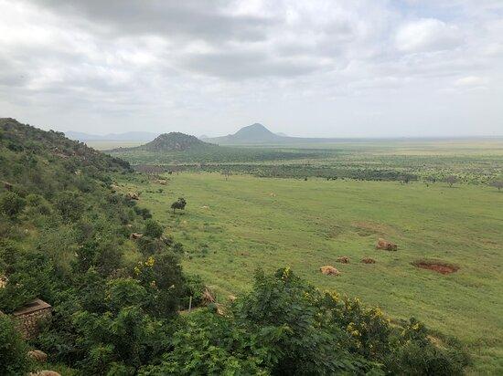 Safari Kenya Owira