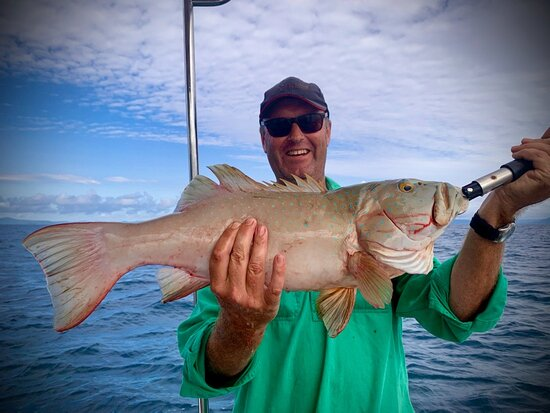 Cooktown Bluewater Charters