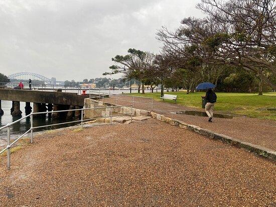 Mort Bay Park