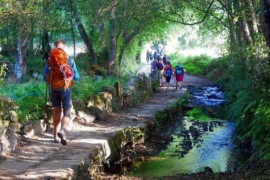 7-Day Tour of the French Way of Santiago from Sarria