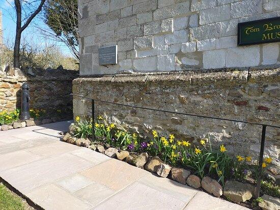 Uffington, UK: Spring flowers 2021