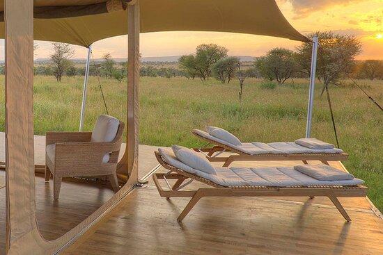 One World Safaris 的照片 - 乞力马扎罗山国家公园照片 - Tripadvisor