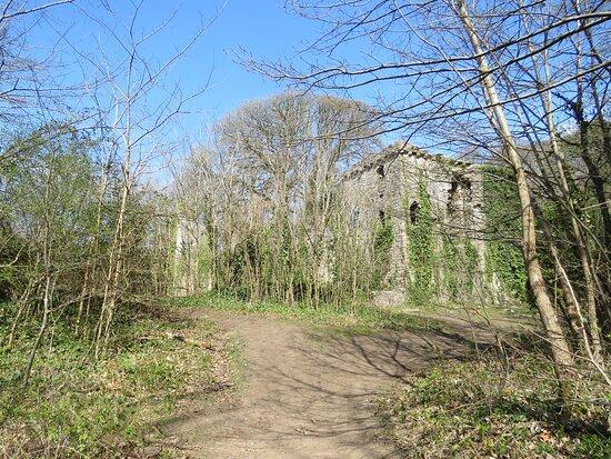 Candleston Castle