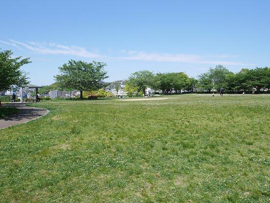 Korodai Park