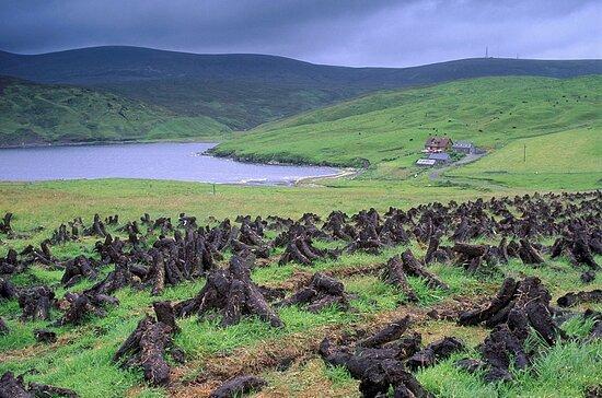 Shetland Islands, UK: Isole Shetland 3