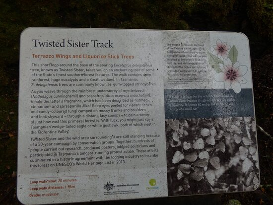 Twisted Sister Track