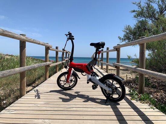 Mobigreen - Noleggio Scooter e Bici Elettriche
