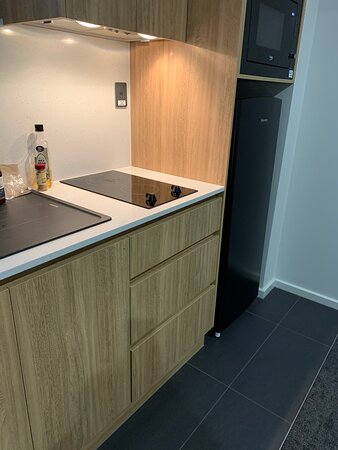 cooktop, convection microwave and large fridge
