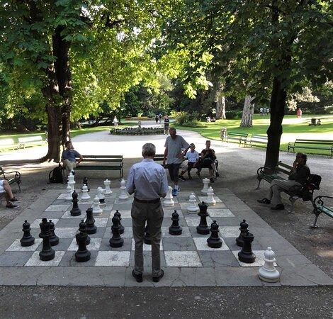 Schachspieler.