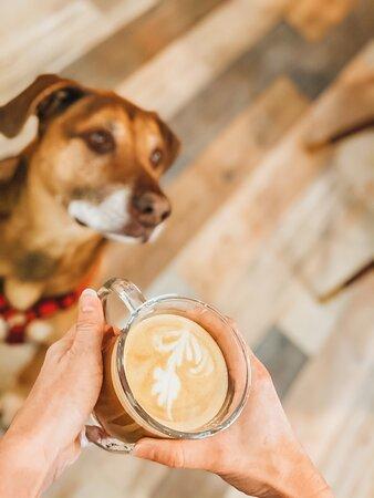 Whole latte love!