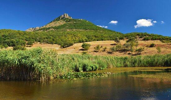 Alushta Municipality: Гора Демерджи. Вид на южную вершину