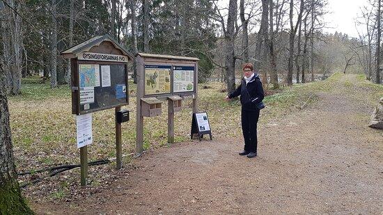 Gysinge naturreservat, infotavlor