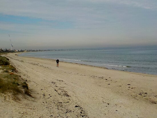 looking South from the North end of the beach