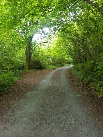 Inistioge, Irlande : Beautiful walks in woodstock