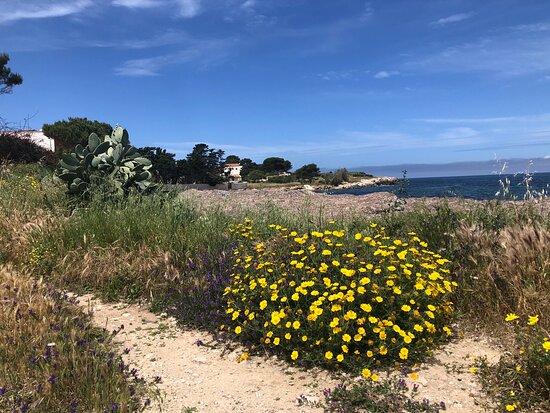 Bonagia, Italia: Panorama .... WILD  !