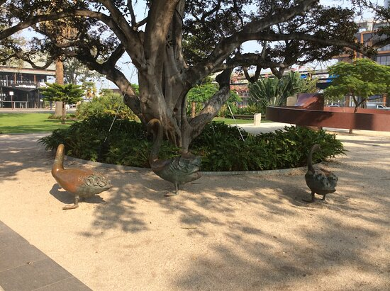Bronze Swan Sculptures