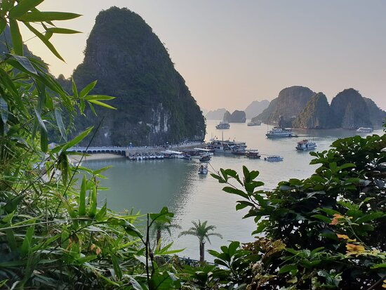 Overnight Luxury 5 Star Alisa Cruise with Meals, Kayak or Bamboo Boat: Picture postcard of Halong Bay...