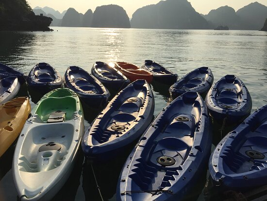 Overnight Luxury 5 Star Alisa Cruise with Meals, Kayak or Bamboo Boat: Beautifully calm and serene..