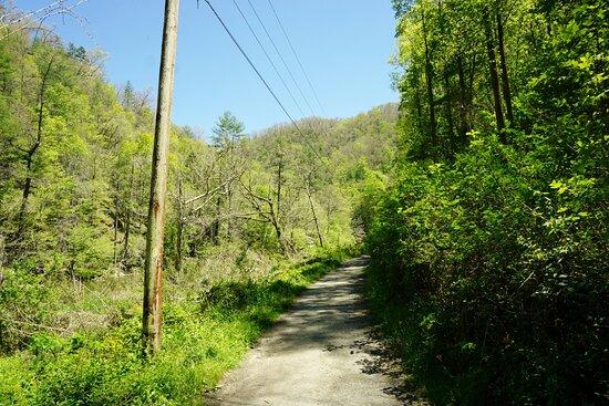 Laurel River Trail, Marshall NC