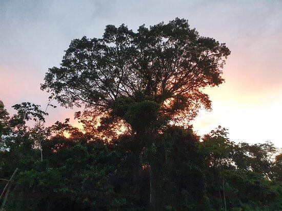 Lagunas, Peru: Amazonas