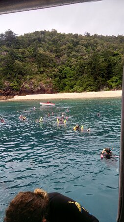 Whitehaven Beach and Hill Inlet Lookout Full-Day Snorkeling Cruise by High-Speed Catamaran Photo