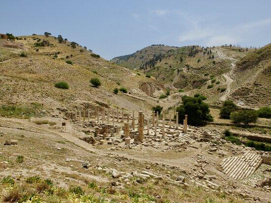 Irbid Governorate, Jordania: Viewpoint