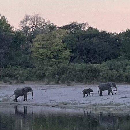 Bwabwata National Park Photo