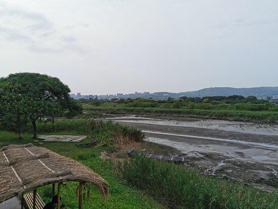 Shezidao Wetlands