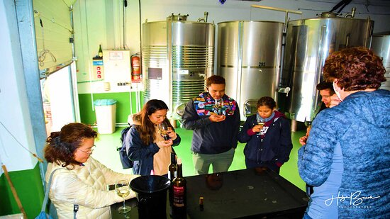 Malaga Shore Excursion: Panoramic Buggy Tour with Wine Tasting in a Historical Cellar: Buggy & Bodega Tour