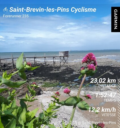 Proxi - Location De Vélo
