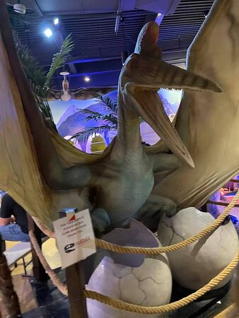 Once upon a time there was a mom... her name was Mrs. Pteranodon...