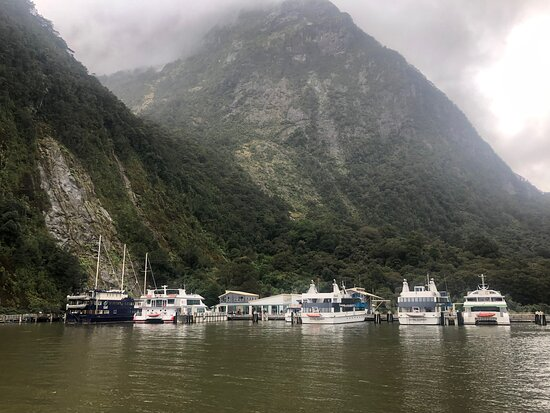Milford Sound with Jucy…