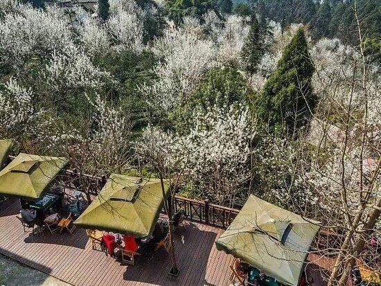 Фотография Pujiang County