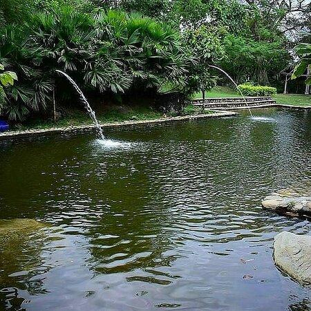 San Antonio lugar de descanso en contacto con la naturaleza, ubicado en Campoalegre Huila