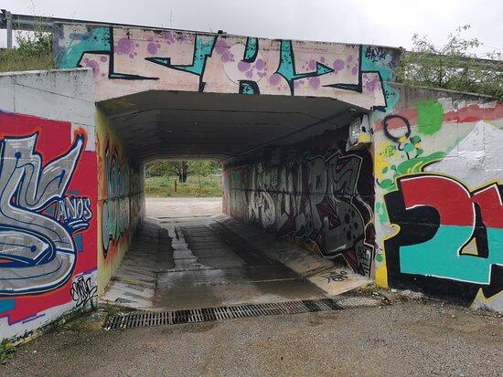 Presa del Gasco Las Matas Trail