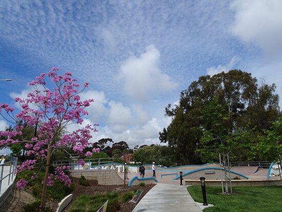 La Colonia Skate Park