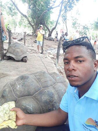 Prison islands (tortoise island)