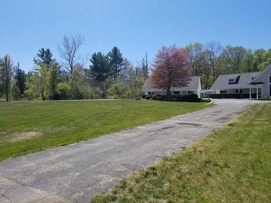 Front Lawn/Driveway