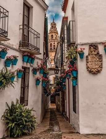 Siviglia, Spagna: Barrio de la cruz