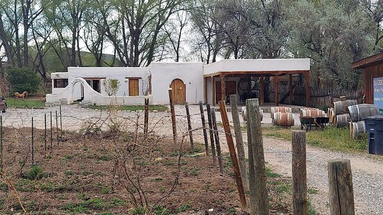 Dixon, NM: Winery through vineyard