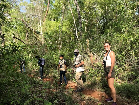 Bird Watching Tour in the Amazili Nature Reserve and Cenote Kax Ek: the trail that we went on with 3 of Ichi's students was remarkable! The northern potoo, parrots, mot mots, many flycatchers, several groove-billed anis, black catbirds, mangrove cuckoos--and MORE!